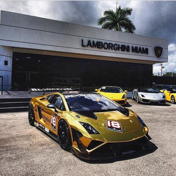 gold lambo
